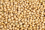 Image of close up of soya beans background