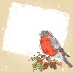 Christmas hand drawn retro postcard with bullfinch bird
