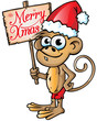 Monkey xmas cartoon whit background