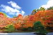 秋の天授庵