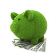 Grass covered piggy bank on top of money