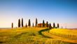 Paesaggio Toscano, villa con cipressi