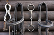 canvas print picture - Details of diversity used horse reins