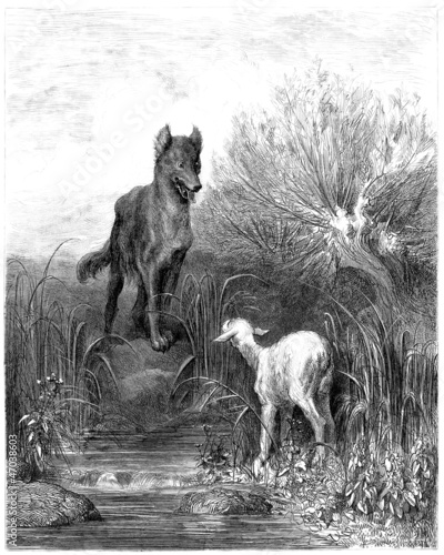 Wolf & Sheep - Loup & Agneau