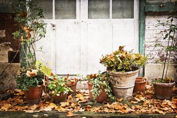 Pots de fleur, terrasse rustique