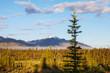 Alaskan landscapes