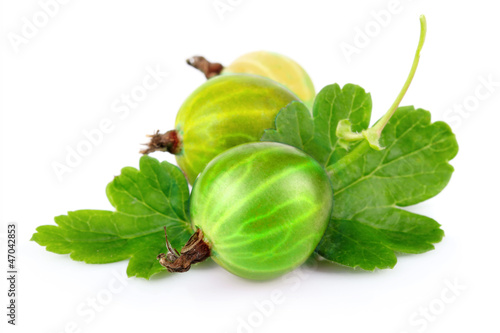 Two red gooseberries with green leaves isolated