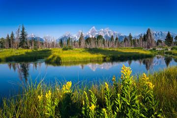 Vista del parco naturale Grand Teton dallo snake river