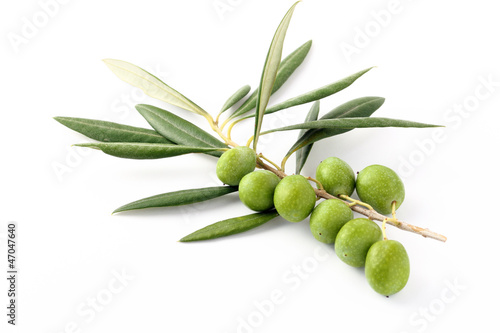 Olive verdi e ramoscelli 2 - Olive green and twigs 2