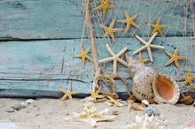 Décoration Maritime: filet de pêche, de coquillages et étoiles de mer