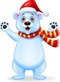 Polar bear cartoon with red hat