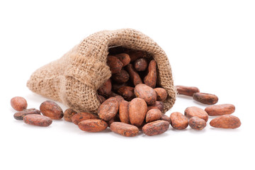 Raw Cocoa bean