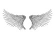 Tattoo wings isolated vector illustration