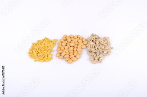 greenbean soybean sunflower seed