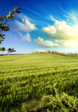 Meadows of Tuscany in Spring Season