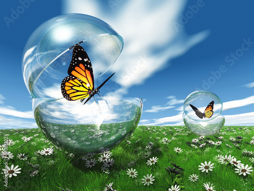 Papiers peints Papillon butterfly in a bubble in the meadow