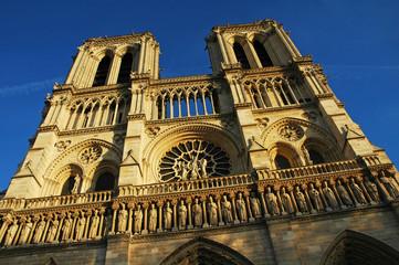 Cattedrale di Notre- Dame al tramonto, Ile de la Cité, Parigi