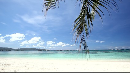Beautiful beach with moving palm leafs