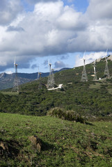 Wind farm in Tarifa, Spain