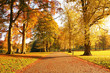 Wonderful autumnal scene in the park