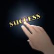 achieving success