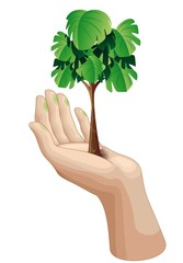 Hand with Growing Green Tree-Mano con Albero-Ecologia-Vector