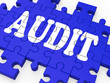 Audit Puzzle Showing Auditor Inspections