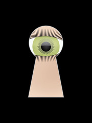 eye peep at key hole vector illustration