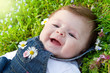 baby on green grass with daisy