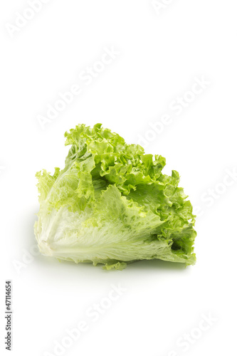 head of lettuce