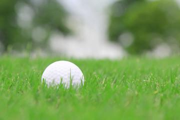 golf ball on a rough grass