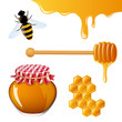 Vector Illustration of Honey Elements