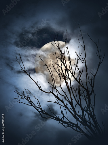 noc-w-pelni-ksiezyca