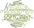 Word cloud for Project management software