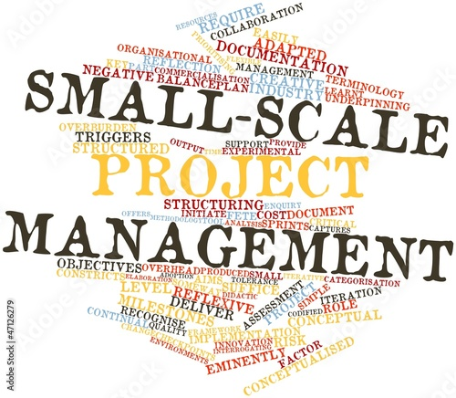 Word cloud for Small-scale project management