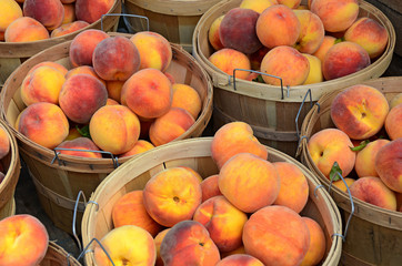 peaches in bushel baskets