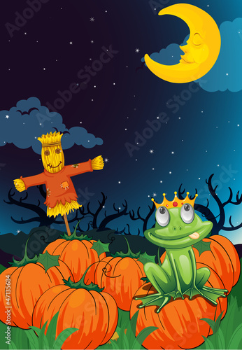 a scarecrow and frog