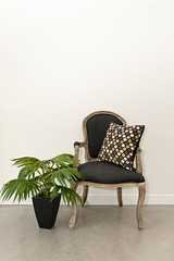 Antique armchair and plant near wall