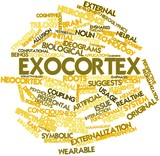 Word cloud for Exocortex