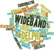 Word cloud for Wideband delphi