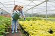 Gardener helping little girl watering plants