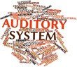 Word cloud for Auditory system