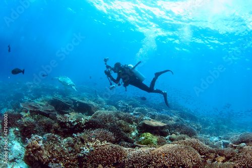 Underwater photographer on a coral reef