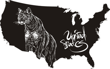 Cougar and U.S. outline map