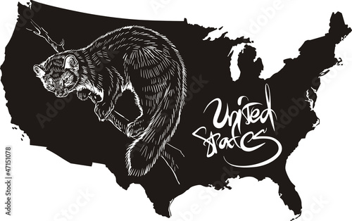 Marten and U.S. outline map