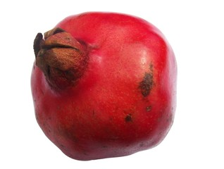 pomegranate fruit (Punica granatum)