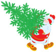 Santa Claus carrying Christmas tree