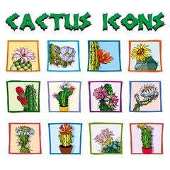 i cactus di Jacopo
