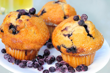 Blueberry Muffins on White Plage and Tea