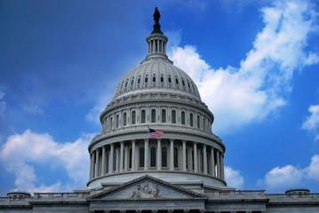 Capitole des Etats-Unis Washington D.C.
